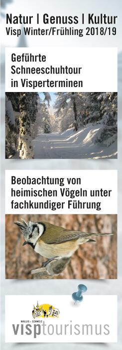 Visp Winter Frühling 2019
